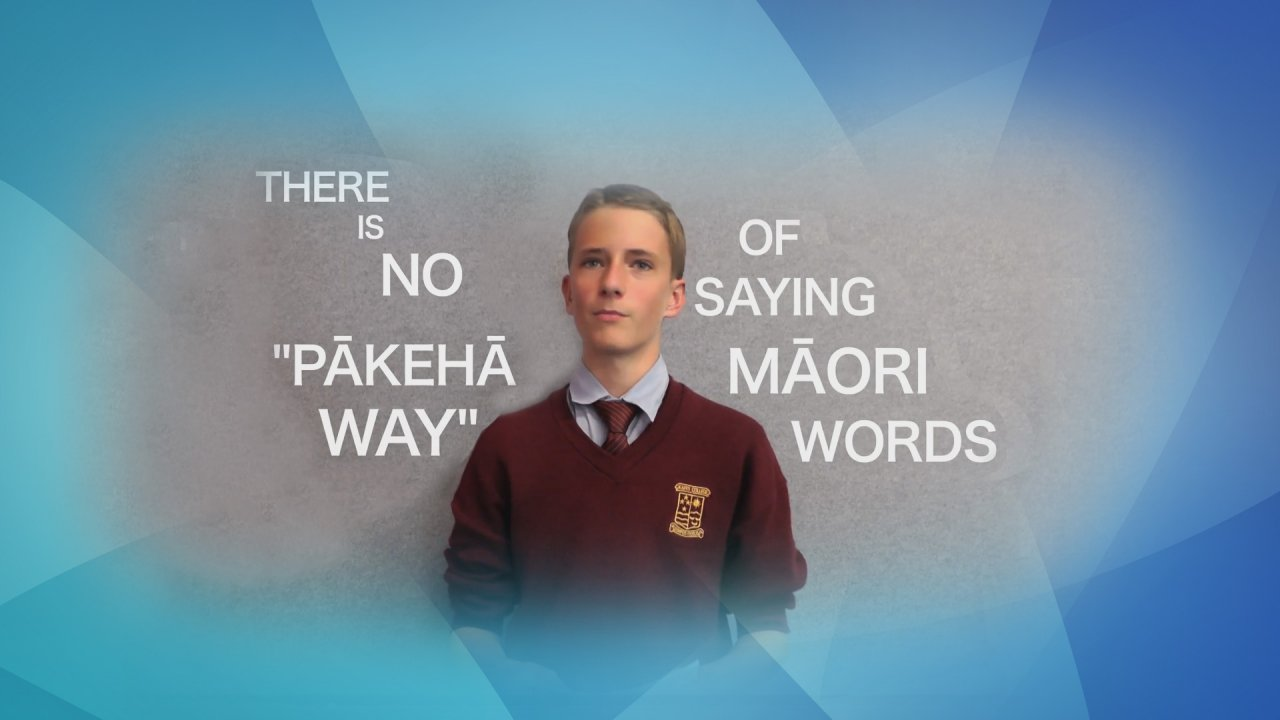should te reo maori be compulsory in all schools essay Political figures who made their way to waitangi 2017 comment on compulsory te reo compulsory te reo māori in schools should te reo māori be compulsory.