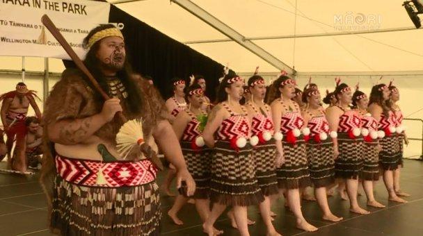 Ngā Taonga Mai Tawhiti, Te Whanganui-a-Tara 2016 Regional Winners - Photo / file
