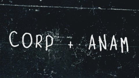 Corp + Anam