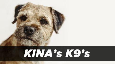 Kina's K9s