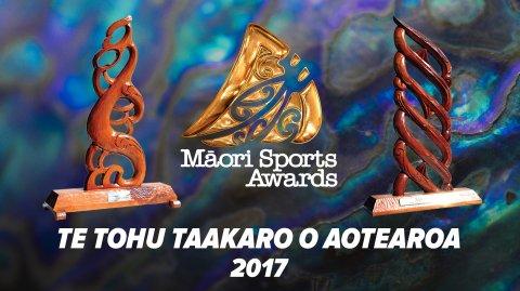 Te Tohu Taakaro o Aotearoa 2018