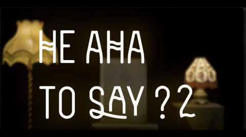 He aha tō Say? 2