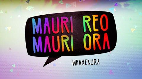 Mauri Reo, Mauri Ora, Wharekura