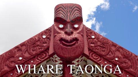 Whare Taonga