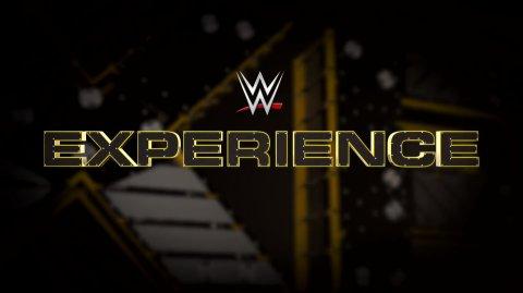 WWE Experience