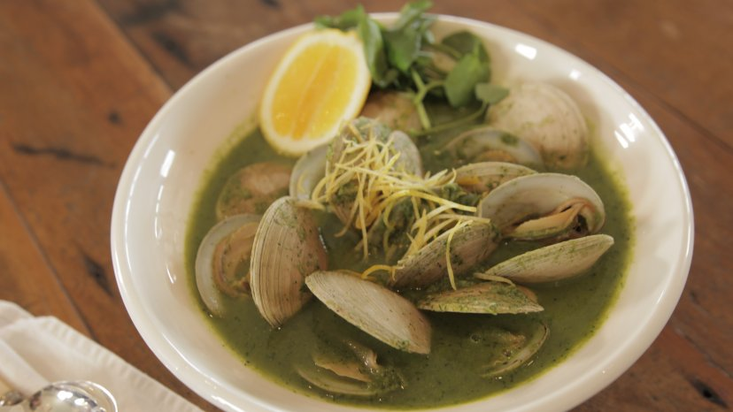 Basil Soup and Clams on display