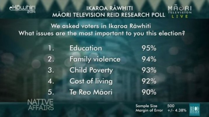 Ikaroa-Rāwhiti Poll - Important Issues