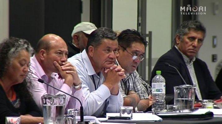 Iwi leaders - Photo / file
