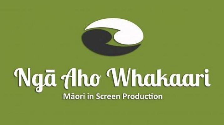 Ngā Aho Whakaari to host Matariki Ngā Aho Shorts gala night - Photo / file