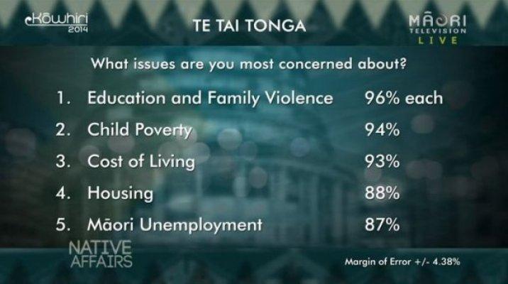 Kōwhiri 14 - Te Tai Tonga