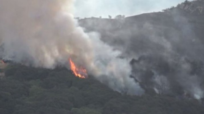 NZ wildfire razes 11 homes, as firefighters battle inferno