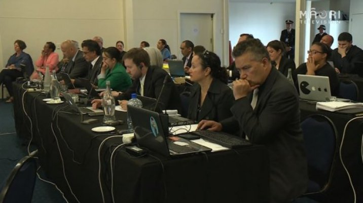 Urgent hearing called by Waitangi Tribunal in Waitangi - Photo / file