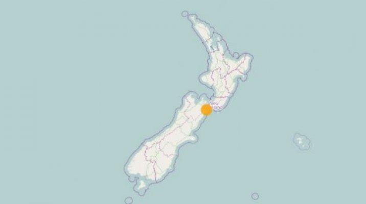 Quakes register in the Seddon area - Photo / geonet.org.nz