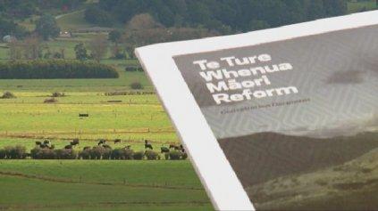 Ture Whenua Māori - Photo / File
