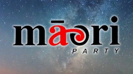 Māori Party - Photo / File