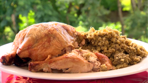 Chicken and Stuffing on a plate