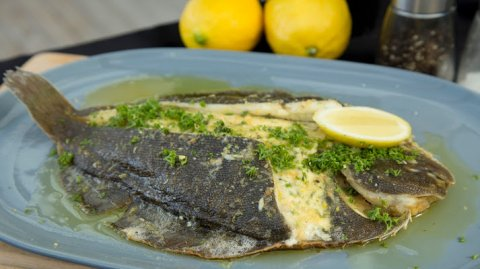 Finisihed flounder dish presented in a plate on the bench