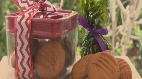 Gingernut Cookies presented on a bench in a glass jar