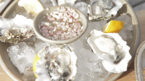 Oysters Natural on display