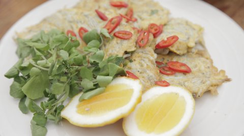 Fluffy Whitebait Fritters (Whitebait in two tasty ways) on display