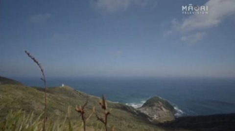 Cape Reinga - Photo / file