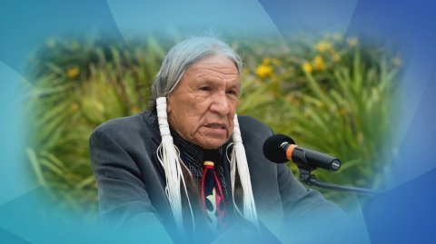 Native American actor Saginaw Grant welcomed onto Waiwhetū Marae - Photo / file