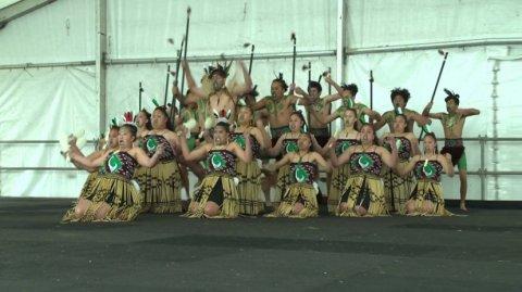 Te Kura Kaupapa-a-Rohe o Māori - Image / File