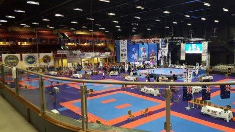 Taekwon-Do Worlds - Image / International Taekwon-Do NZ