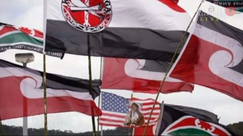 Various flags of Aotearoa - Photo / file