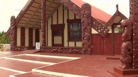 Ngati Whakaaue - Photo / File