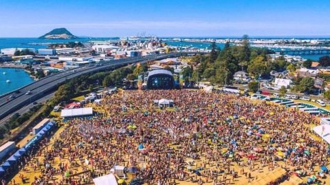 One Love NZ Festival at Tauranga Domain - Image / One Love NZ Festival Facebook