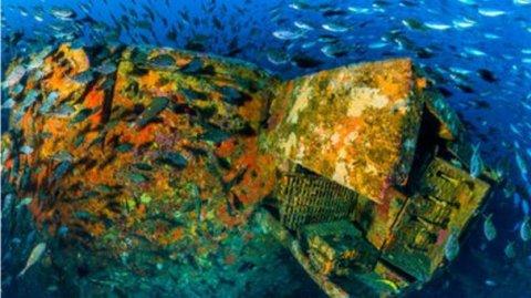 Rena Wreck Image credited to Darryl Torckler
