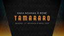 Haka Ngahau ā-Rohe Tamararo